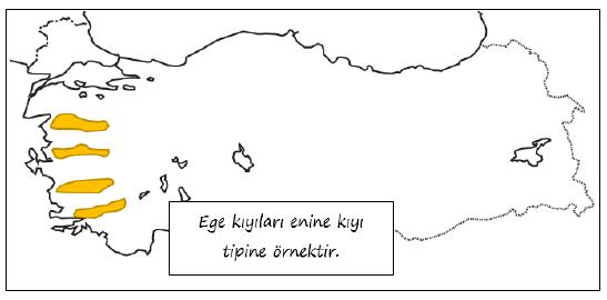 Türkiye'de Görülen Kıyı Tipleri ve Özellikleri 2