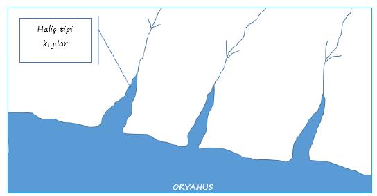 Türkiye'de Görülen Kıyı Tipleri ve Özellikleri 5