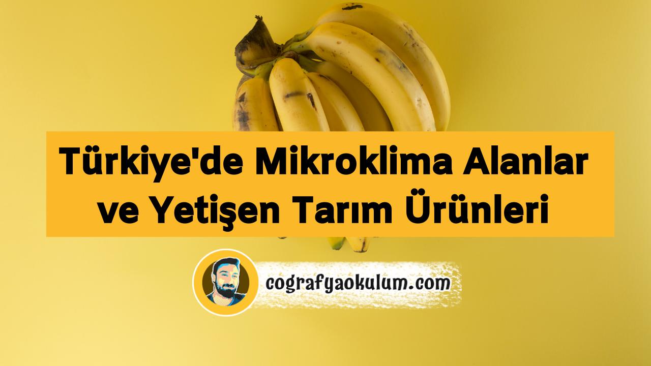Mikroklima İklim Nedir / Türkiye'de Hangi Tarım Ürünleri Mikroklima Alanda Yetişir 13