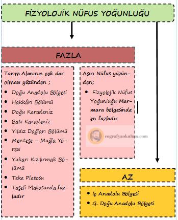 Türkiye'de Nüfus Yoğunlukları / Aritmetik - Fizyolojik - Tarımsal Nüfus Yoğunluğu 2