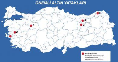 Türkiye'de Altın Çıkarılan Yerler 3